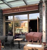The Bison Entrance