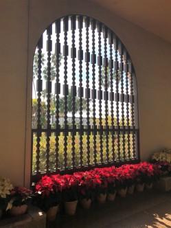 Interior of the Botanical Garden
