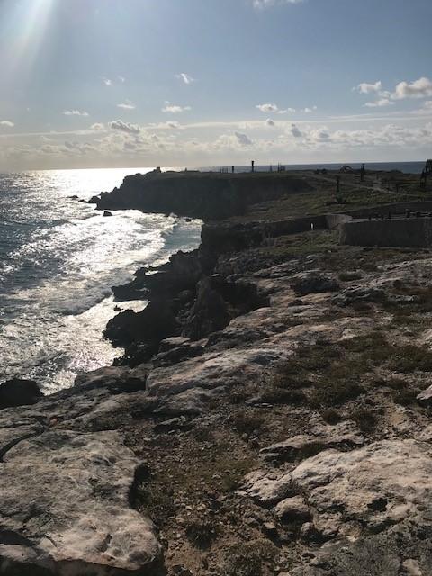 isla7