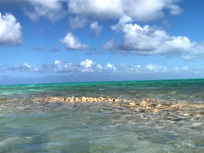 Conch island views