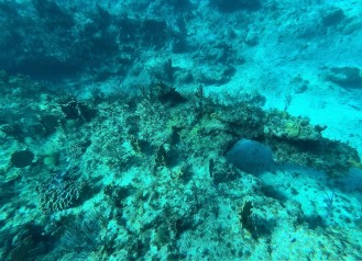 Snorkel Spot