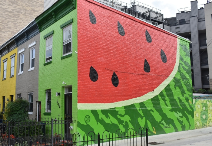 The Watermelon House