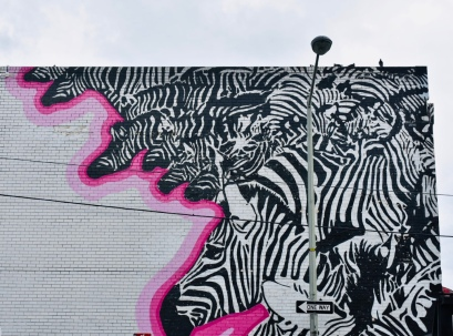 Zebras by Peter Krsko
