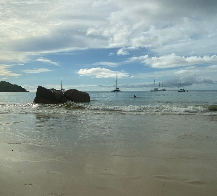 Beaches of Praslin