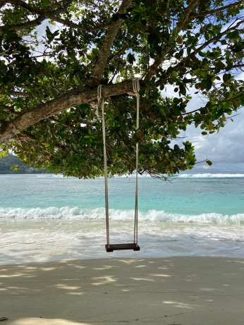 Swinging in the Seychelles