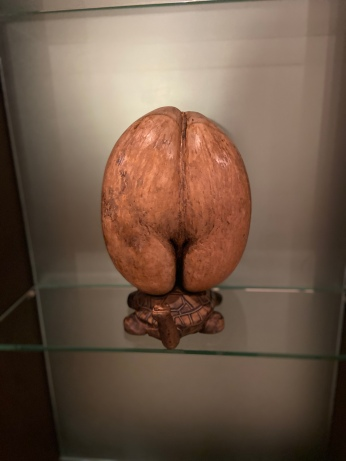 The nut in all its kinky glory